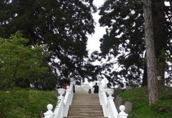 Массандровский дворец фото 45